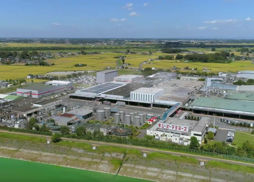 工場見学の紹介