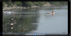 『7月9日 動画(写真提供:小林一郎氏)』の画像