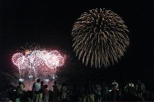 『利根川大花火2』の画像