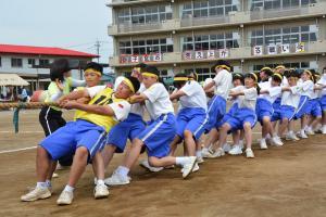 『H30中学校体育祭綱引き』の画像