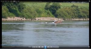 『H30.6.26 ハクレンジャンプ動画(小林一郎氏提供)』の画像