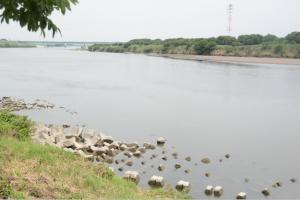 H30.7.3 利根川の様子