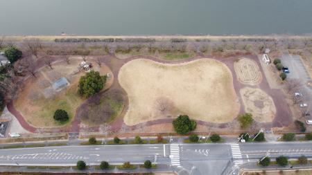 童夢公園(バラ)