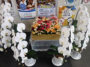 花き展示(役場)