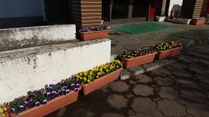 花いっぱい(3)